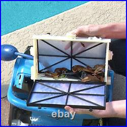Dolphin Nautilus CC Plus Automatic Robotic Pool Cleaner with Easy to Clean Large